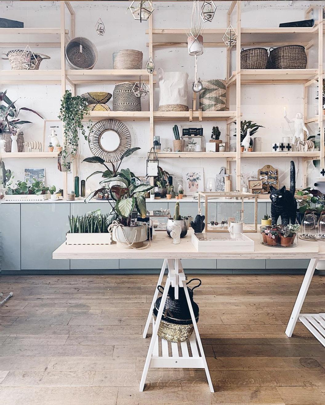 Intérieur du magasin Ooak Cabinet des Curiosités, à Louvain-la-Neuve